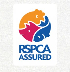 spoiltpig - Latest News - RSPCA